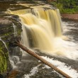 Stock Photo: Colorful Cascade in Wilds