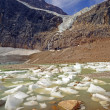 Alpine Glacier and Ice Lake in Summer — Stock Photo