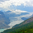 Alpine Glacier in Summer — Stock Photo #40714749