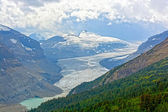 Alpine Glacier in Summer — Stock Photo