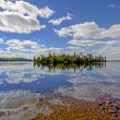 Sunny Reflections on a Clear Lake — Stock Photo
