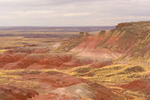 Red Desert on a Cloudy Day — Stockfoto