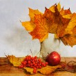 Autumn still life — Stock Photo #26721525