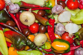 Group of fresh different vegetables — Stock Photo