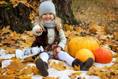 Girl with pumpkins on autumn background — Stock Photo