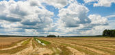 Summer landscape with field harvest and large overhanging clouds — Stock Photo