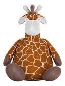 Adorable fat stuffed giraffe — Stock Photo