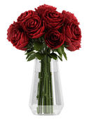 Vase of deep burgundy red roses — Stock Photo