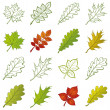 Stock Photo: Leaves of plants and pictograms, set
