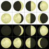 Moon phases, set — Stock Vector