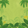 Tropical floral background — Stock Photo #11864753