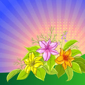 Sole, lily e sfondo fiore — Foto Stock