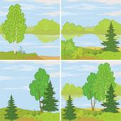 Set forest landscapes — Stock Vector