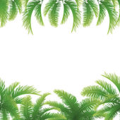 Seamless background, palm leaves — Stock Vector