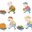 Farmers with vegetables and pumpkins — Stock Photo