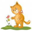 Cat, flower and butterfly — Stock Photo