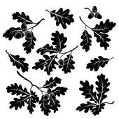 Oak branches with acorns, silhouettes — Vettoriale Stock