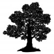 Oak tree and grass, silhouette — Imagen vectorial