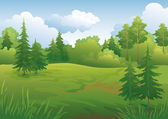 Landscape, summer forest — Stock Vector