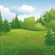 Stock Photo: Landscape, summer forest