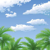 Palm trees and sky with clouds — Stock Photo