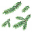 Branches of a Christmas tree — Stock Photo