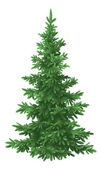 Christmas fir tree, isolated — Stock vektor