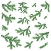 Bir Noel ağacı dalları — Stok Vektör