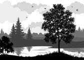 Landscape, trees, river and birds silhouette — Stock Vector