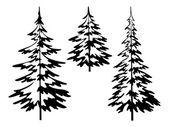 Christmas fir tree, contours — Stock Photo