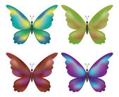 Set butterflies — Cтоковый вектор
