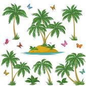 Tropical island, palms and butterflies — ストック写真