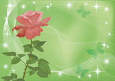 Holiday background with flower rose — Foto de Stock