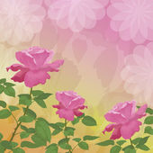 Holiday background with flower rose — Stockfoto