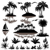 Tropical set with palms silhouettes — Stock Vector