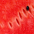 Red fresh watermelon background — Foto de stock #12030840