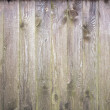 Background texture of old gray weathered wooden wall — Stock Photo #12518013