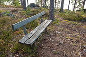 Empty wooden bench in the park — Stock Photo