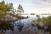 Coastal landscape, Saimaa lake, Karelia, Finland — Stock Photo