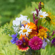 Stock Photo: Bright colorful bouquet of garden and wild natural flowers