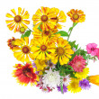 Stock Photo: Isolated on white bright colorful bouquet of garden and wild natural flowers