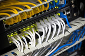 Large network hub and connected Internet cables. Selective focus — Stock Photo