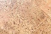 Natural cork board panels — Stock Photo