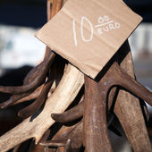 Antlers as a souvenir with price on the counter — Foto de Stock