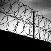Barbed wire on dark fence. Monochrome shilouette photo — Foto Stock