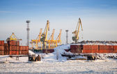 Cargo port in winter. Containers poles and cranes. St.Petersburg, Russia — Stock Photo