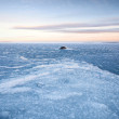 Winter landscape with ice on frozen Baltic Sea — Stock Photo