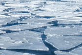 Winter nature background with blocks of ice on frozen blue Sea — Stock Photo