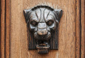 Wooden lion head relief - decorative element on ancient weathered door in old part of Tallinn, Estonia — Stock Photo