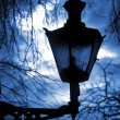 Old Lantern in Tallinn above dark blue sky and tree branches — Stock Photo